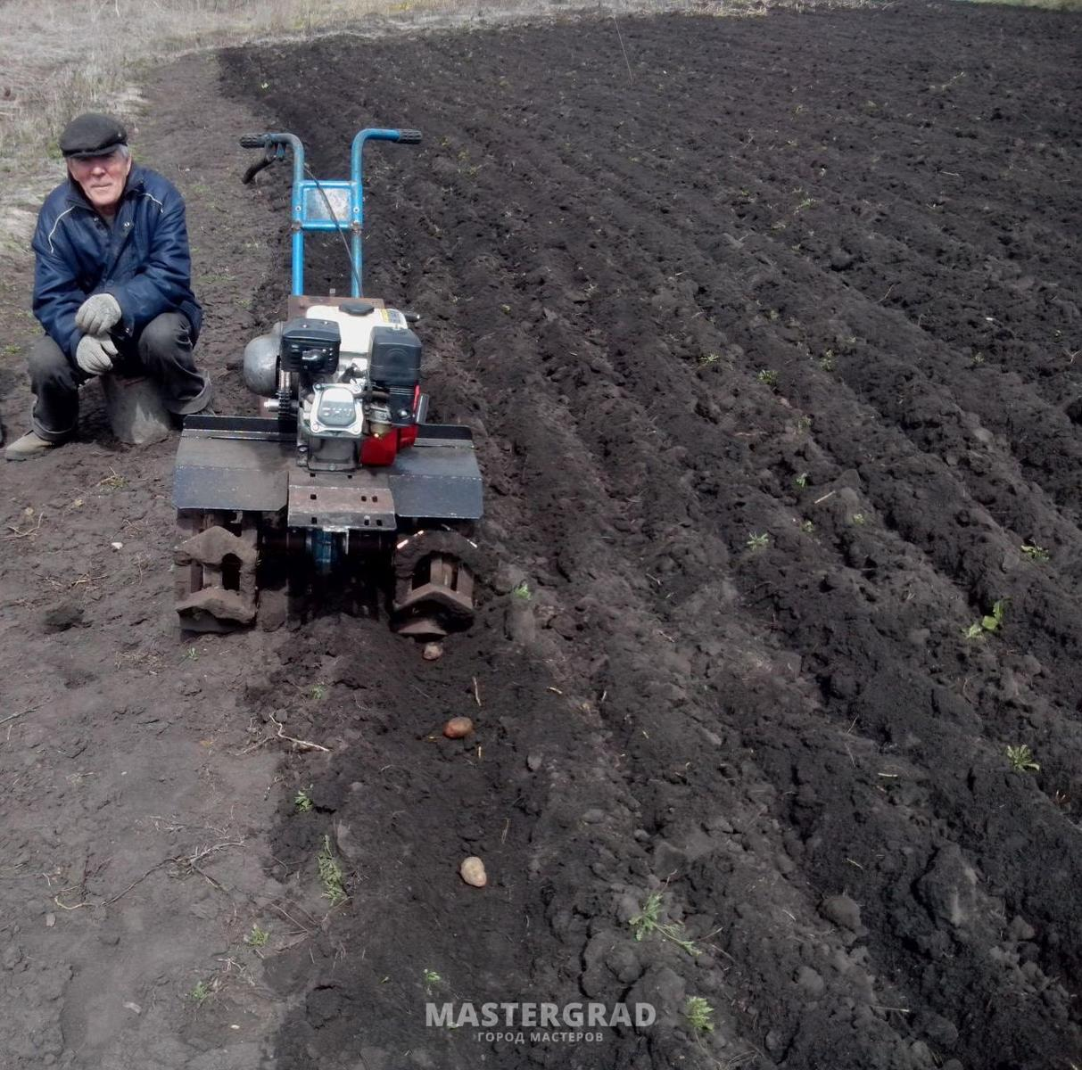 Особенности посадки картофеля под плуг вручную и мотоблоком 21