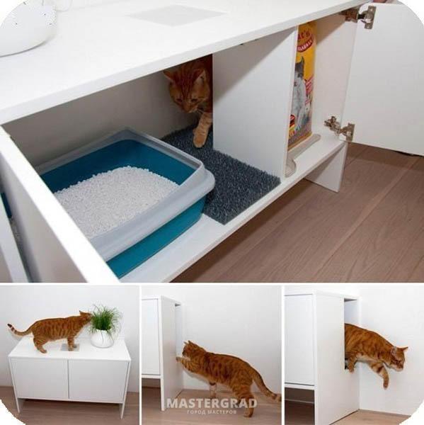 Скамейка-туалет для кошек ? - фото - Форум Mastergrad