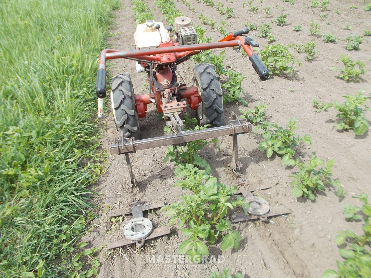 Особенности посадки картофеля под плуг вручную и мотоблоком 96