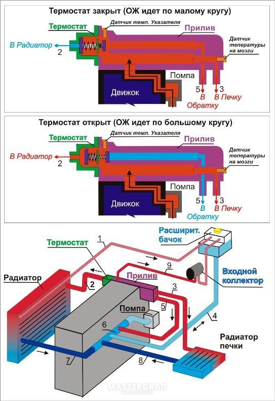 Вектра клуб Россия( схемы